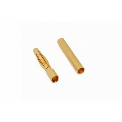 Conector oro 2mm