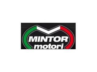 Mintor